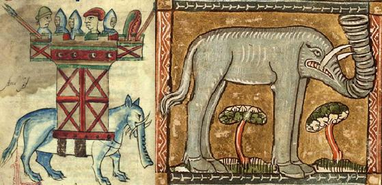 elephant believes of humanity