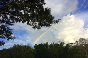 rainbow in the peruvian amazon ayahuasca retreat
